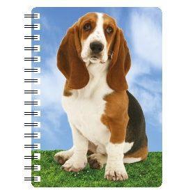 030717118175 3D Notebook Basset Hound