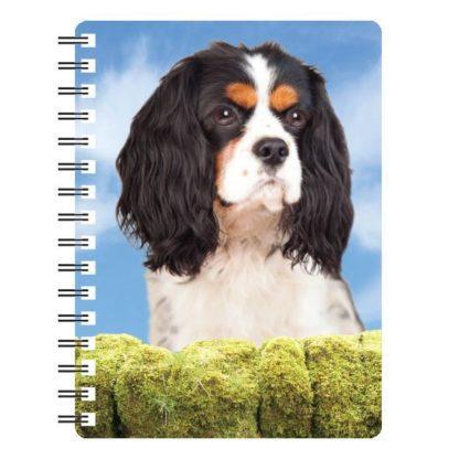 030717115570 3D Notebook Cavalier Tri-Colour 1