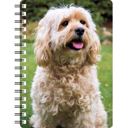 030717120338 3D Notebook Cockapoo 1