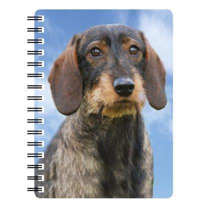 030717118151 3D Notebook Dachshund Wire Hair
