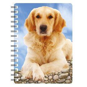 030717119950 3D Notebook Golden Retriever 3