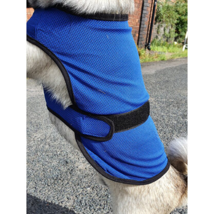 Ancol Dog Cool Coat showing close up of the velcro fastening.