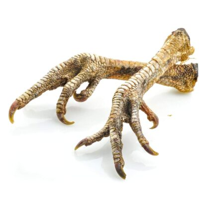 634158950506: JR Pure Healthy Natural Turkey Feet - Singles