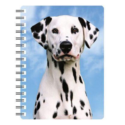 030717115631 3D Notebook Dalmatian