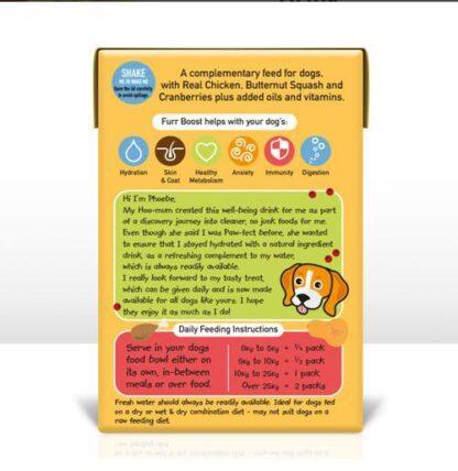 Furr Boost Chicken Butternut Squash and Cranberry Dog Drink 200ml