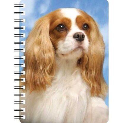 030717121007 3D Notebook Cavalier Blenheim 2