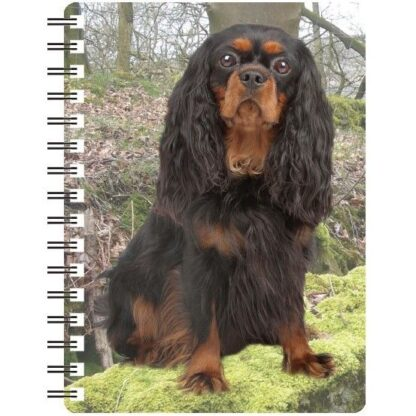 030717115587 3D Notebook Cavalier Ruby and Black