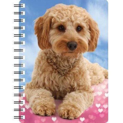 030717120321 3D Notebook Cavapoo