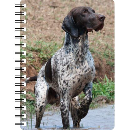 030171122868 3D Notebook German Shorthaired Pointer