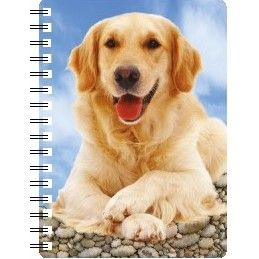 030717118274 3D Notebook Golden Retriever 2