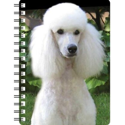 030717120123 3D Notebook Poodle White