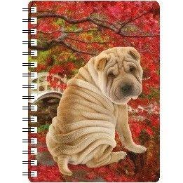 030717118304 3D Notebook Shar-Pei
