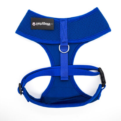 Blue Harness Extra Large