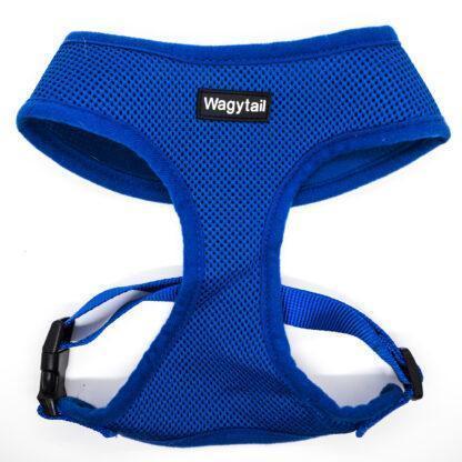 Blue Harness Large