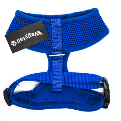 Blue Harness Small