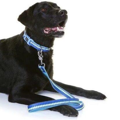 DOOG Pluto LEADN1 Dog Lead